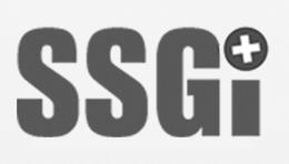 Verein Schweizerische Städte- und Gemeinde-Informatik SSGI, Baar