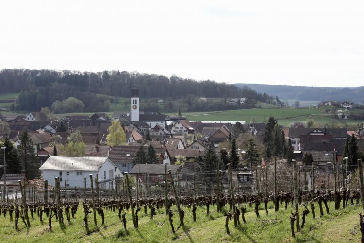 Die Pionierin aus dem Zürcher Weinland